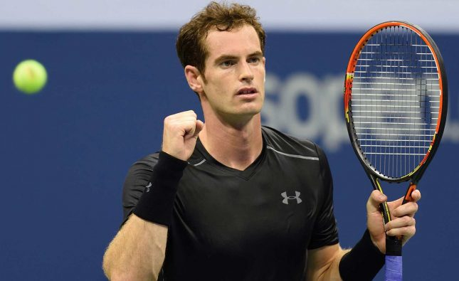 Andy Murray was knocked out in the Wimbledon quarter-finals